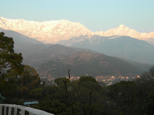 Dhauladhar Snows